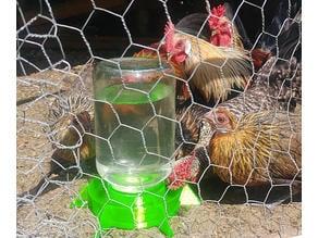 Chicken water dispenser