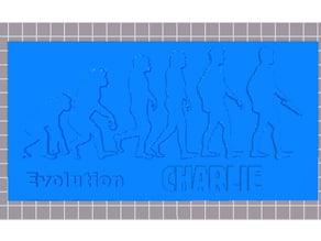 "Evolution CHARLIE ""HEBDO"""