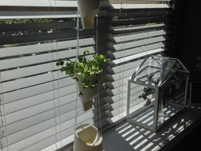 Hydroponic Window Farm