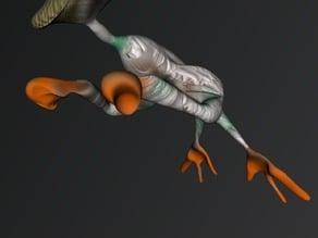 ancient duck