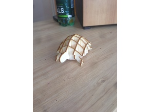 laser cut turtle ;)