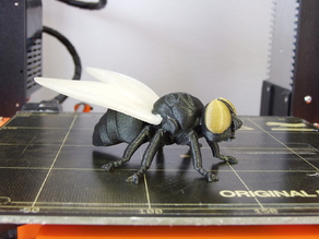 Fly (multi-material)