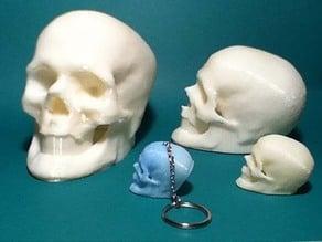 Elvis Skull Resurrected