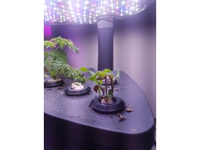 Miracle Grow Hydroponic pod