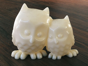 cuddling Owls