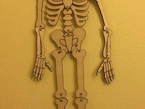 Lasercut Skeleton