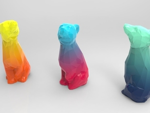 Color Fun Bear