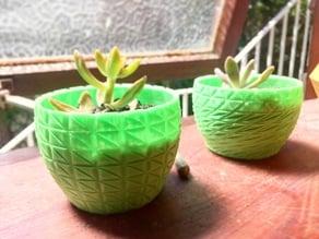 Planter V4