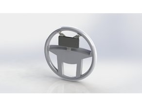 Steering Wheel Video-Assist