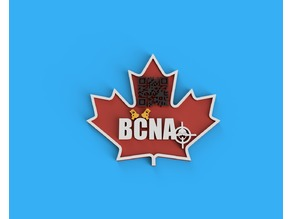 BCNA patch for 3D printing