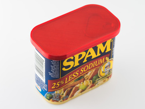 Can Lid (Spam)
