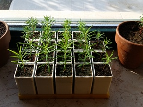 Seedling grid and pots