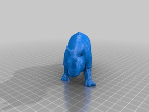 Rhino II