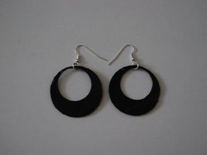 Another pair of Earrings