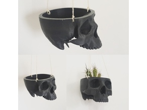 Skull Bowl Remix into Skull Hanging Planter / Pot