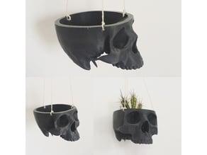 Skull Bowl Remix into Skull Hanging Planter / Pot