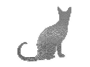 Strange Cat Thing