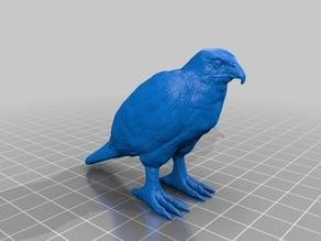 鷹(Hawk)3Dデータ