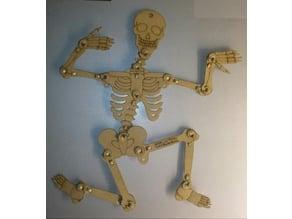 Lasercut articulated Skeleton