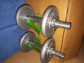 dumbbell and weight wall mounts