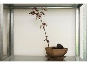 Planter #2