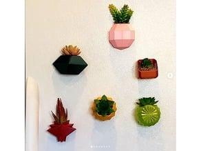 fridge planters