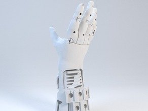 Hollies hand V5