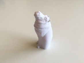 Cat Hippo
