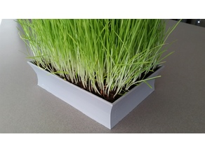 Asian-styled Cat Grass Planter