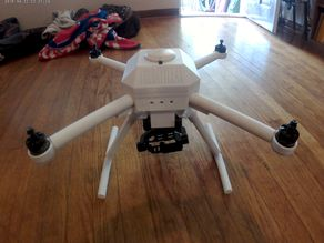 DWT Drone (DJI With 3 Axis Gimbal)