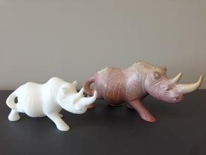 Rhino 3D Scan