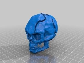 Crusty Skull