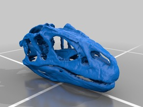 Updated Allosaurus Skull