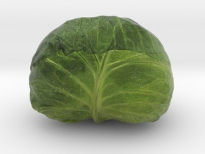 The Cabbage-2