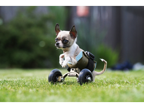 Wheelchair for small dog/cat