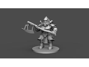 Dwarf Warrior Mini