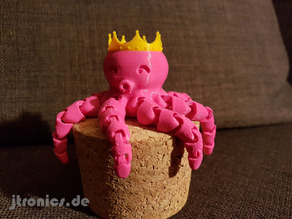 Cute Mini Octopus Princess