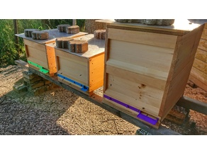 Beehive landing strip / entrance lock