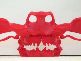 Hammerhead Skull