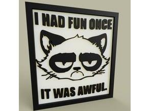 Unhappy Cat