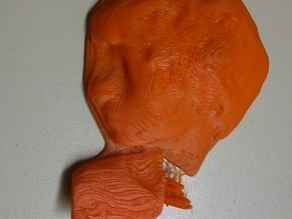 Sample 3D Scanned Head