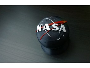 NASA Logo Meatball Ring Case