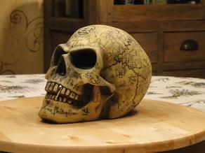 Alchemist Omega Skull