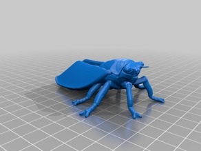 セミ(Cicada)3Dデータ