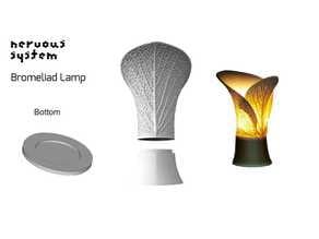 Nervous System Bromeliad Lamp Bottom Plate