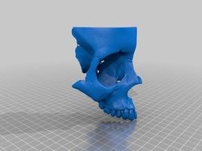 Skull Cut 3