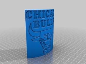 Chicago Bulls Plaque