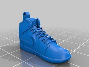 Nike Air Jordans Model Shoes