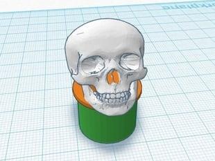 Handlebar Plug -- Skull