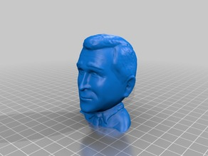George W. Bush Bust